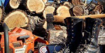 Staatsbosbeheer schort in heel Nederland de contracten op